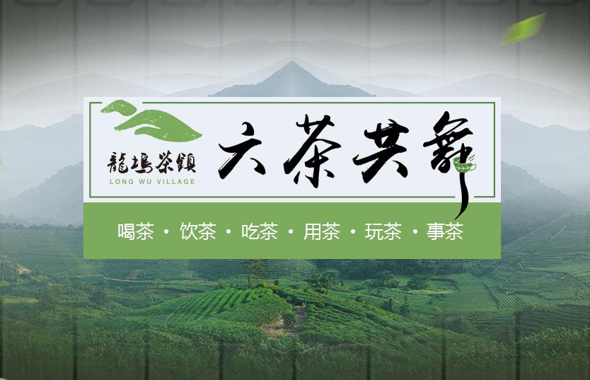 【专题】六茶共舞