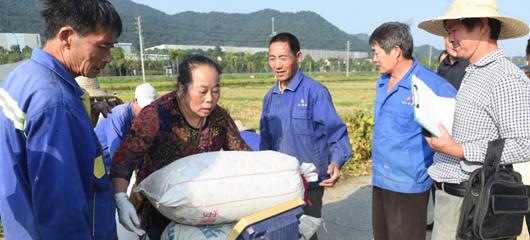合作社全程代理 杭州富阳农民种粮好轻松