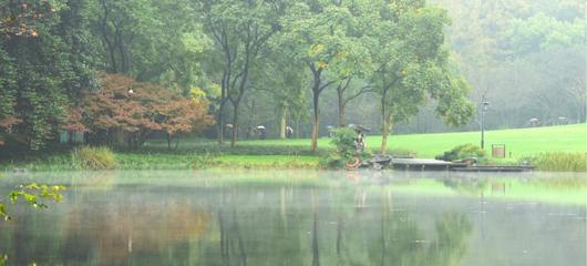 雨雾飘渺太子湾