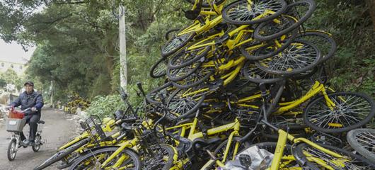 共享单车被弃山林,谁干的?