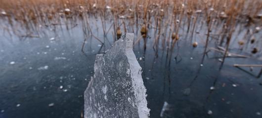 西湖北里湖水域结冰