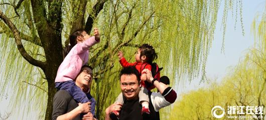 杭州正式入春了