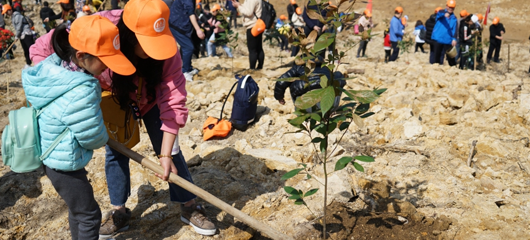 杭州百户家庭共植亲子林