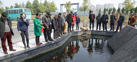 神奇!杭州这家污水处理厂出来的水能养鱼