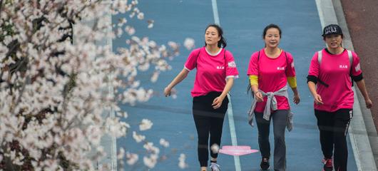 杭州举行2018杭州樱花徒步节