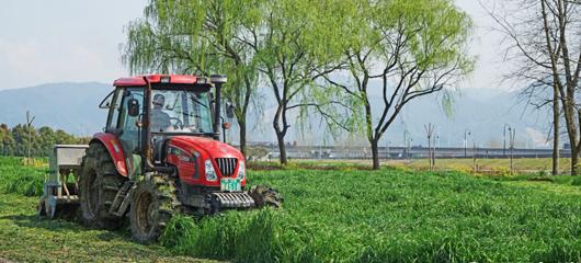 钱塘江边 机器耕种忙