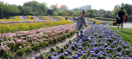 萧山:鲜花绸带满园春