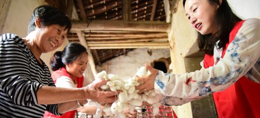 建德:一村一品 助农增收