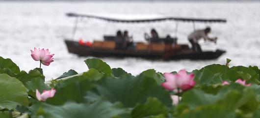 杭州梅雨间歇 气温将上升