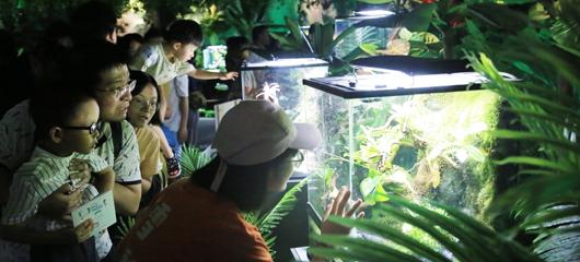 杭州开了家室内动物园 有些动物只在书上见到过