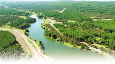 澳门金沙官方开户:中国人工林世界居首_保存面积近七千万公顷