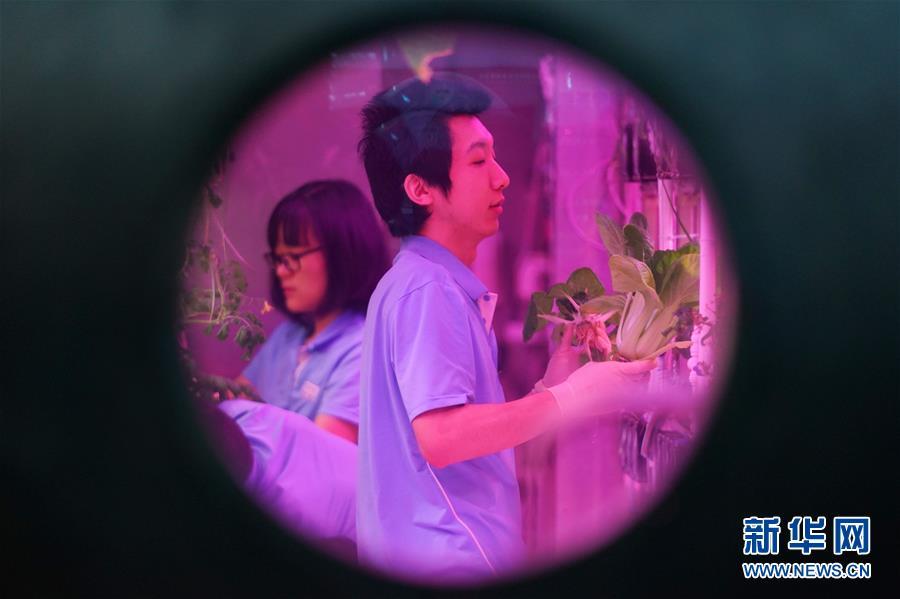 """(科技)(1)北航""""月宫365""""实验成功再创世界纪录"""