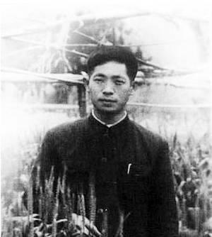 青年袁隆平(图片来源:新商报)图片
