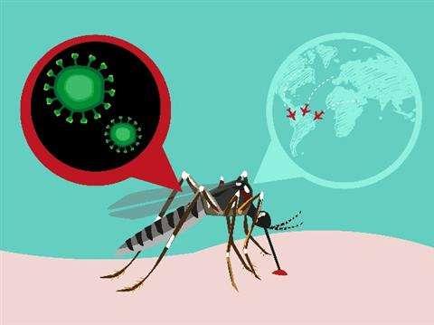 癌症克星竟是他? 研究称寨卡病毒能杀死脑癌干细胞