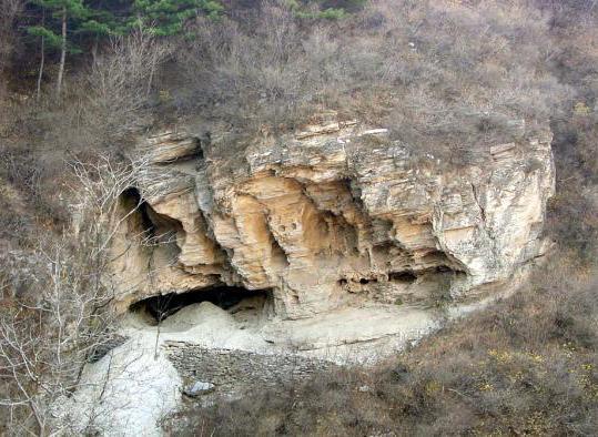 我国古人类基因组研究取得新进展 东亚人祖先另有神秘人群?
