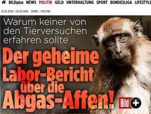 大众汽车被曝用中国进口猴子测尾气危害 默克尔表态:做出解释!