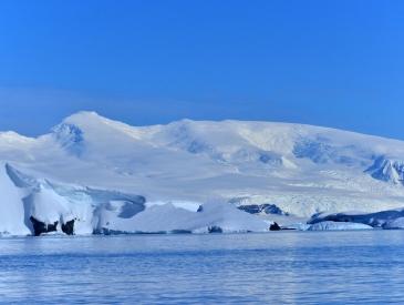 南极游火爆8年增长近40倍 人均16万也难挡热情