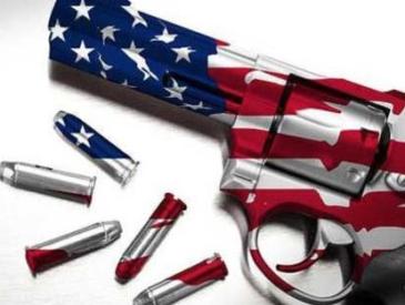 美国佛州州长签署控枪法案 系美颁布首份控枪法案