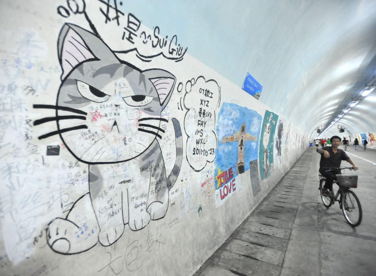 厦大芙蓉隧道壁画遭游客涂鸦 修复赶不上破坏速度