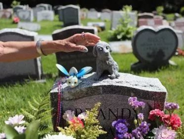 """价格2000元起 墓碑等费用另计 """"宠物墓地""""为何受追捧?"""