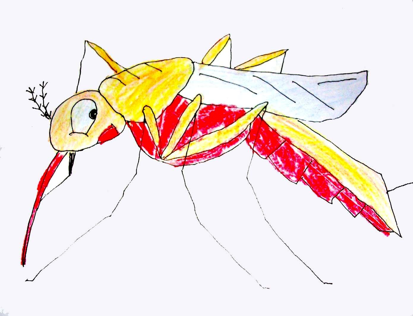 """全国首个""""蚊子出没""""预报上线 哪里最受蚊子青睐?"""