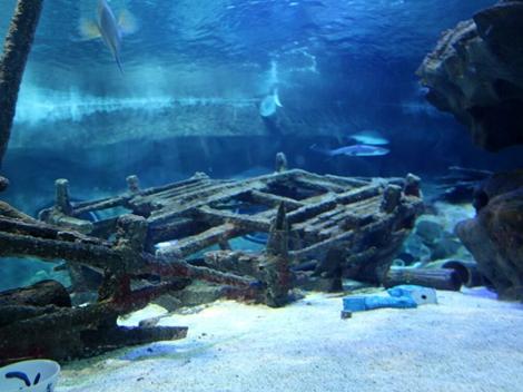 韩国海底发现百年前沙俄军舰 传说藏有200吨黄金