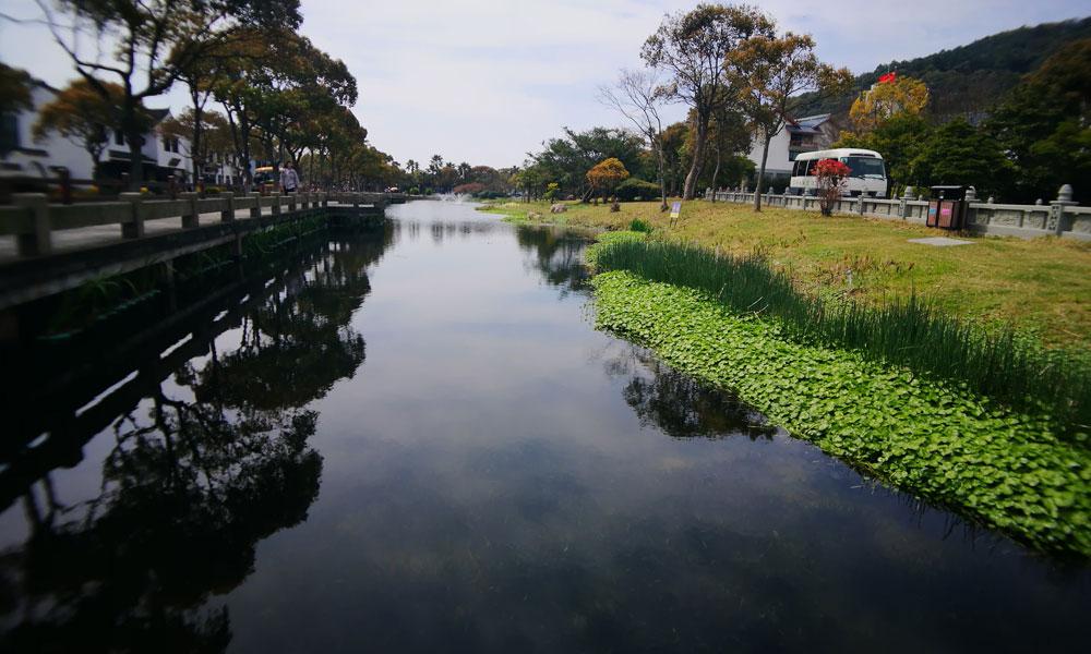 """4,通过此次小城镇环境综合整治,普陀山镇打造""""水下森林""""风景线。以""""一虫一草""""为关键,投放食藻虫吃藻控藻,种养沉水植物吸附分解污染物,增加水体含氧量,实现环境改善、水质提升。.jpg"""