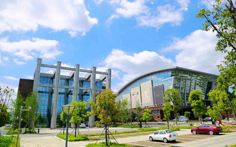 龙港体育馆建成后.jpg
