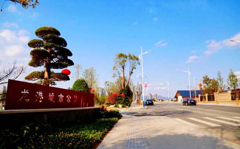 龙港城市公园1.jpg