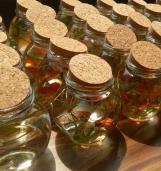 活动三:亲手制作生态瓶