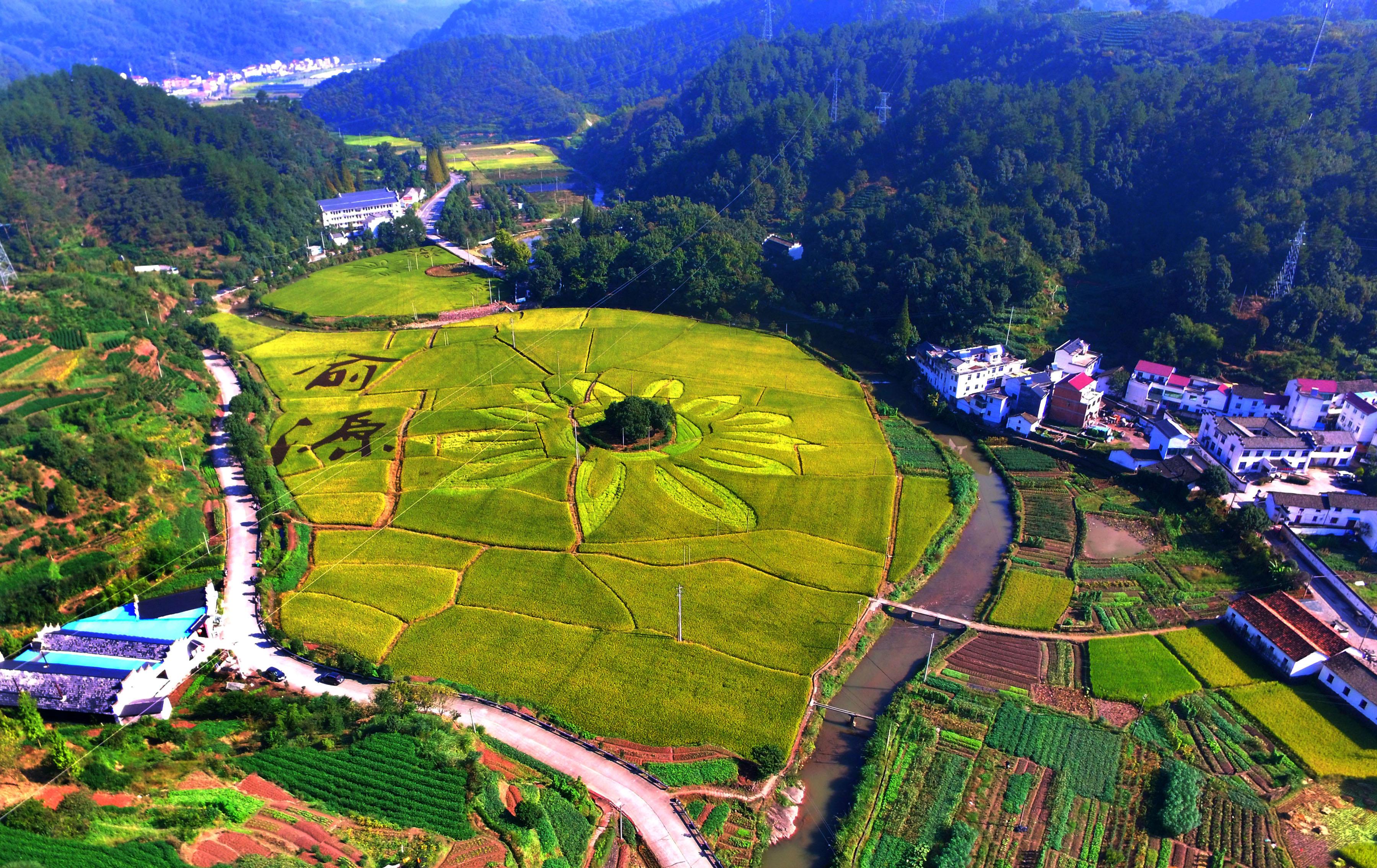 资本与乡村,何以相恋相伴 浙江在线环保
