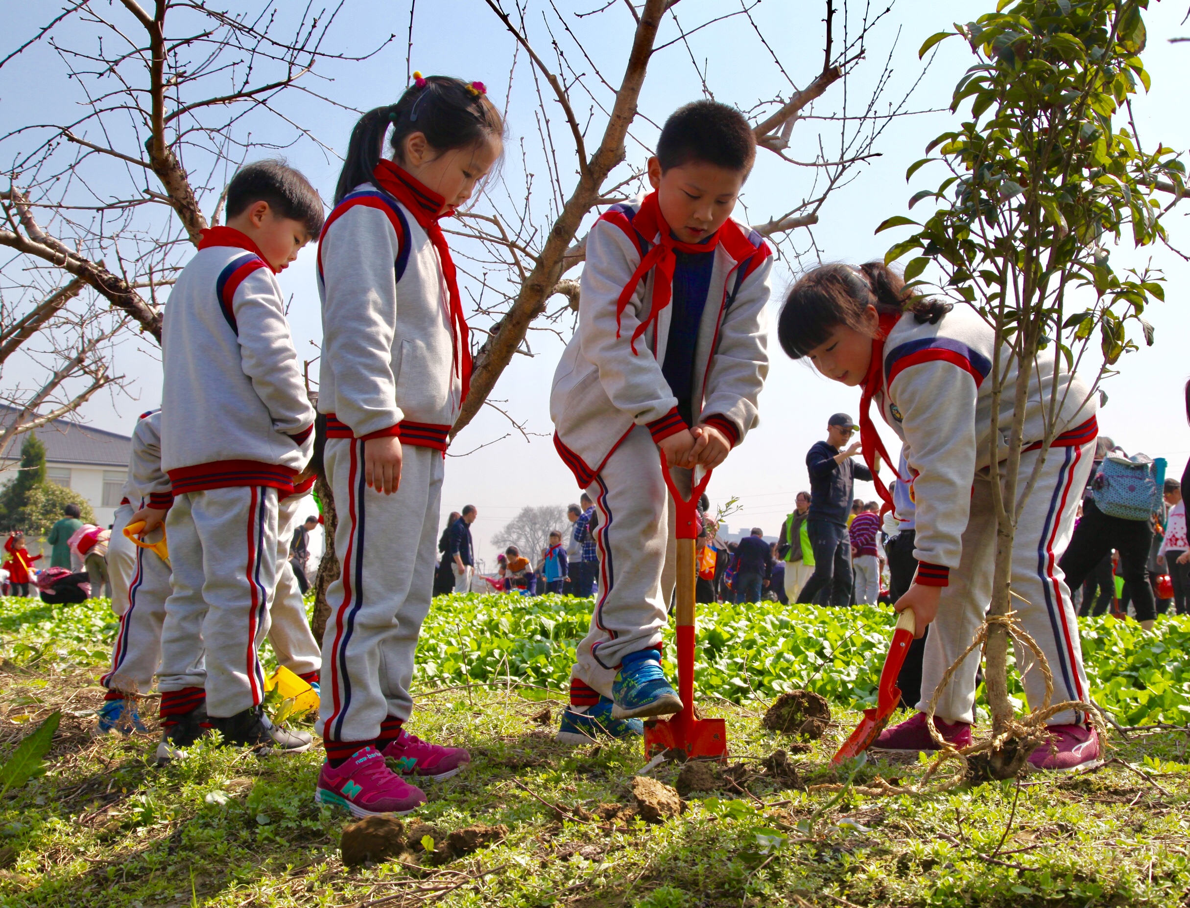 3·12植树节 厚植环境教育理念 共享绿色环保生活