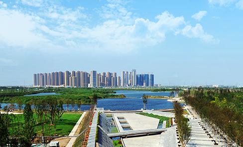 宁波杭州湾新区环境整治提升 打造国际化滨海新城