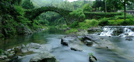 """6·5世界环境日""""绿水青山就是金山银山""""的宁海实践"""