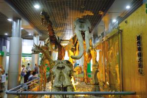 5月出游 博物馆晋升热门打卡地