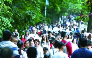 贵州29个景区游客接待量均超一万人次
