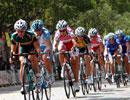 2010年环崇明岛女子国际公路自行车赛