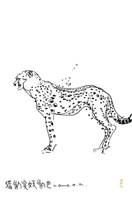 猎豹实妖豹也图片