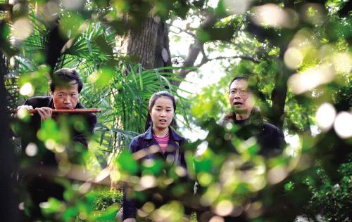 海盐县绮园风景区内 风在树梢弹琴闻昆曲声声