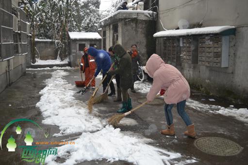 情系居民 社区扫雪忙图片