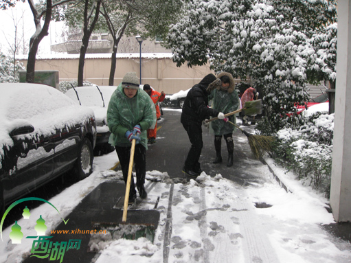 楼长党员扫雪齐上阵 为保邻居安全出行忙图片