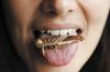 联合国鼓励全球人民吃虫子