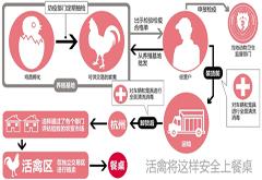 杭州重启活禽交易 还得等几天