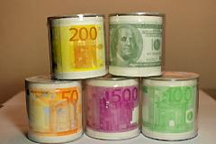创意产品走红:500欧元当厕纸用