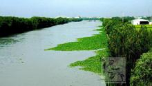 城市发展侵占河道 内涝是防洪最薄弱环节