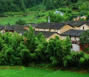 庆元:美丽乡村改变农村命运