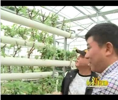 三联农庄的农业梦想