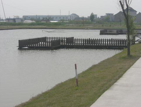 """杭州湾畔涛声依旧 """"最后渔村""""今非昔比"""