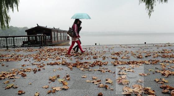 秋雨渐止 凉意愈浓