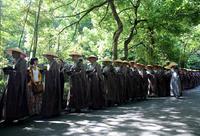 三百僧人托钵行脚 为慈善募捐